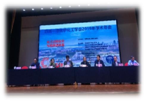 四省一市化学化工学会2019年学术年会在武汉江汉大学隆重召开
